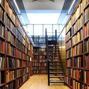 Библиотеки Монино
